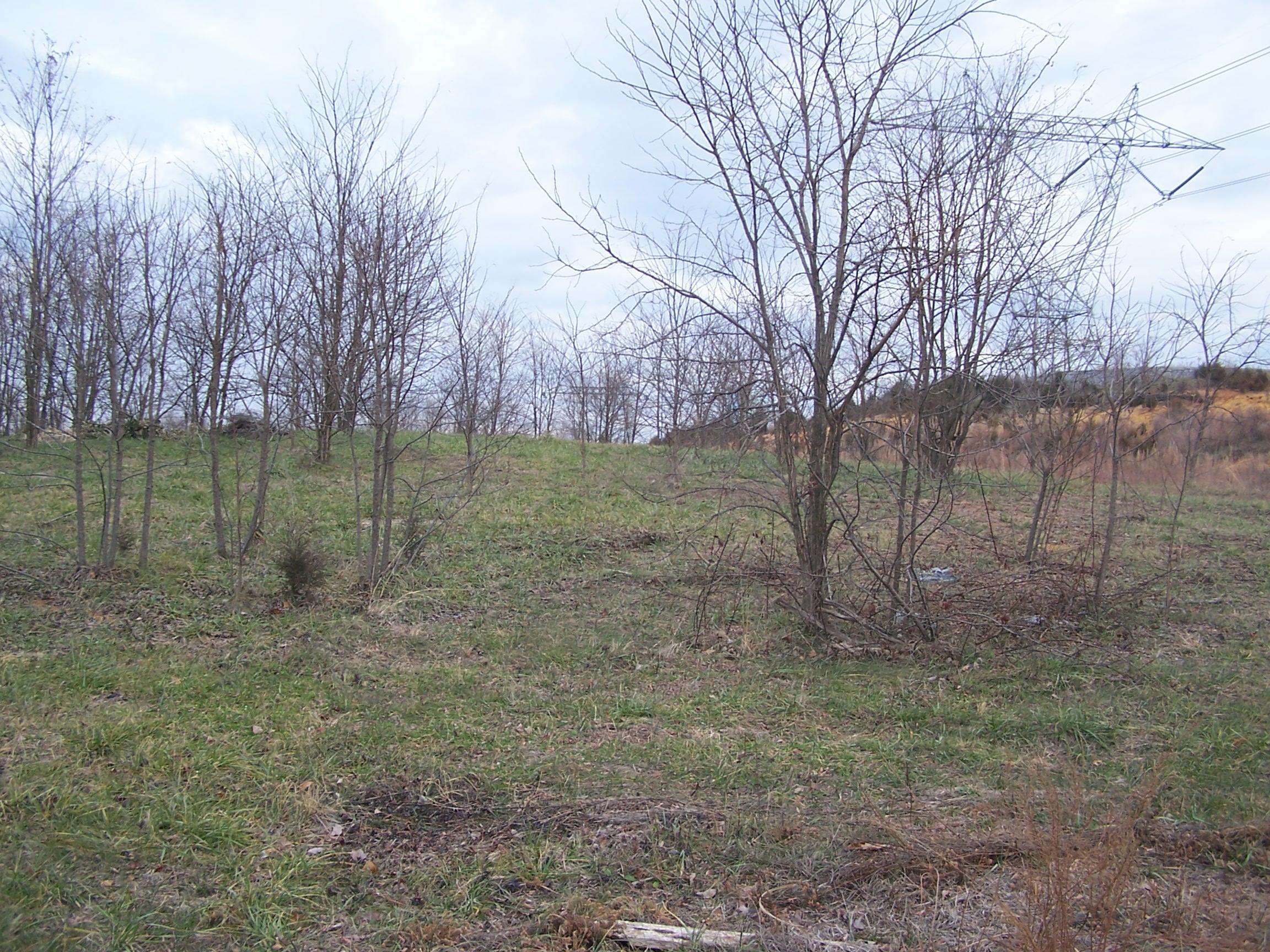 Photo of 0 Island Green RD Daleville VA 24083