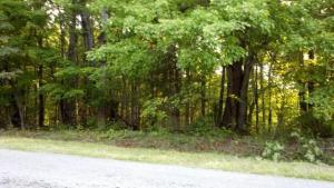LOT 1 GREEN LEVEL RD, Boones Mill, VA 24065