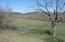 Lower pasture & water tank