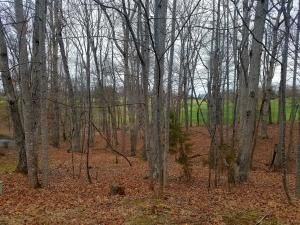 Lot 218-A Hunterwood CIR, Penhook, VA 24137