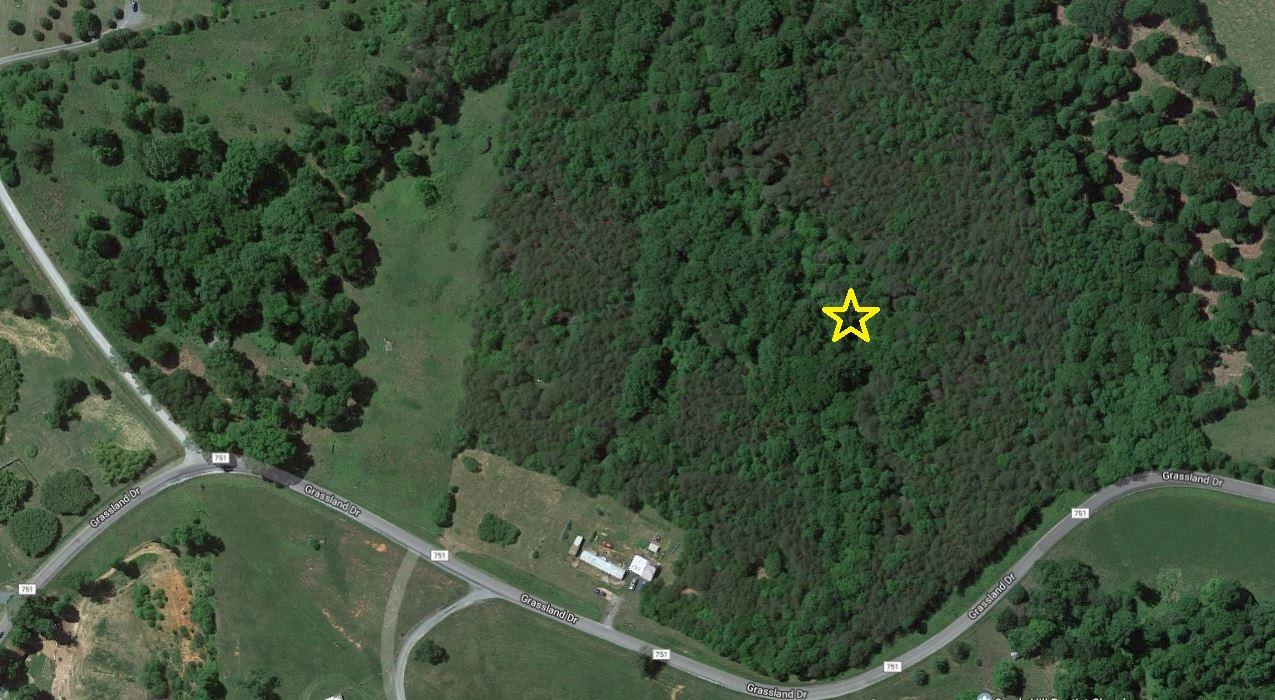 Photo of TRACT 21 GRASSLAND DR Sandy Level VA 24161