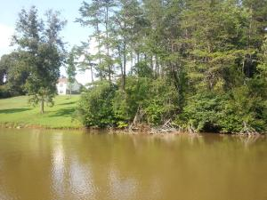 Affordable Waterfron Lot at Smith Mountain Lake