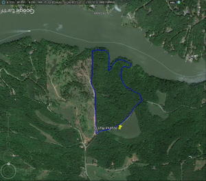 Google Earth aerial per GIS