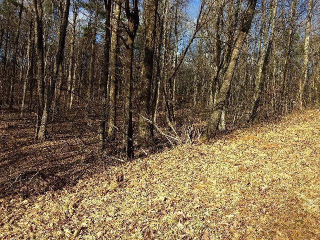 Photo of Lot 366 Chestnut Ridge DR Copper Hill VA 24079