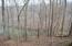 Lot 27 Lake Trail CT, Goodview, VA 24095