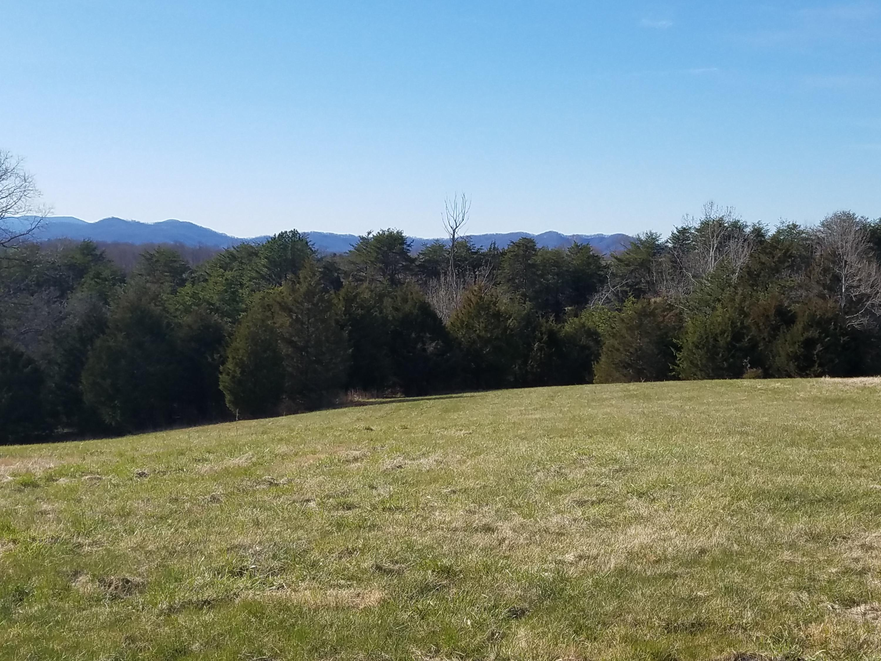 Photo of Lot 42 Halsey CT Wirtz VA 24184