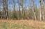 Lot 1 S Pointe Shore DR, Moneta, VA 24121