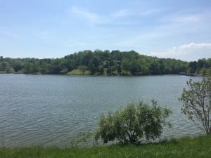 Lot 6 Carters Island DR, Goodview, VA 24095