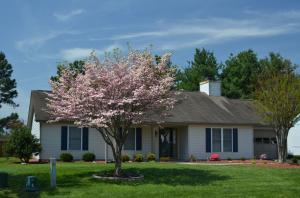 2231 Bloomfield AVE, Roanoke, VA 24012