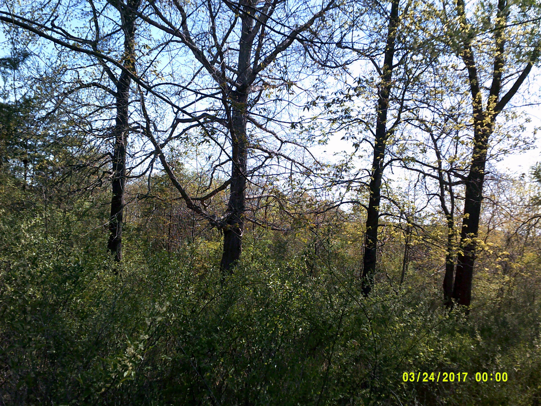 Photo of 0 Isle Of Pines DR Moneta VA 24121