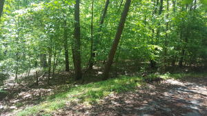 Lot 25 Gap Bridge RD, Moneta, VA 24121