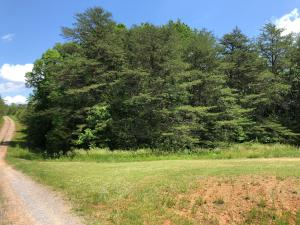 Lot L Melody Springs DR, Hurt, VA 24563