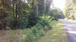 Lot 65 GAP BRIDGE RD, Moneta, VA 24121