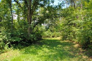 3741 Knob Creek TRL, Elliston, VA 24087