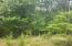 NICE WOODED LOT, GENTLY SLOPE