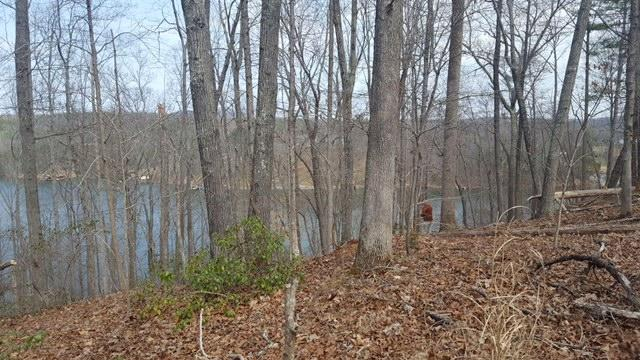 Photo of Lot 79 Old Mill DR Hardy VA 24101