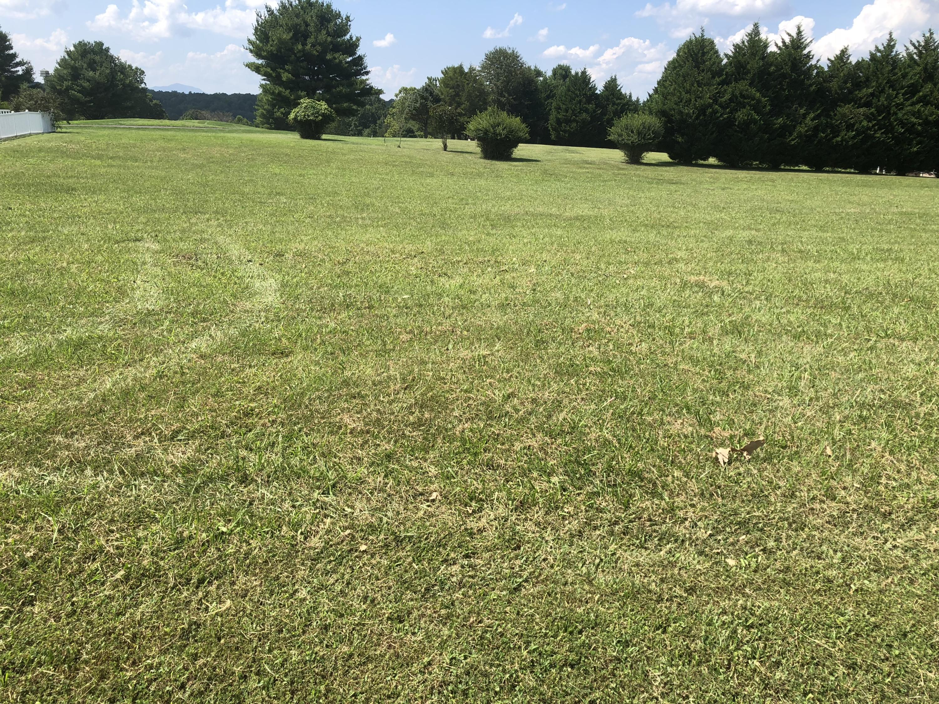 Photo of LOT 4 MOREWOOD RD Hardy VA 24101
