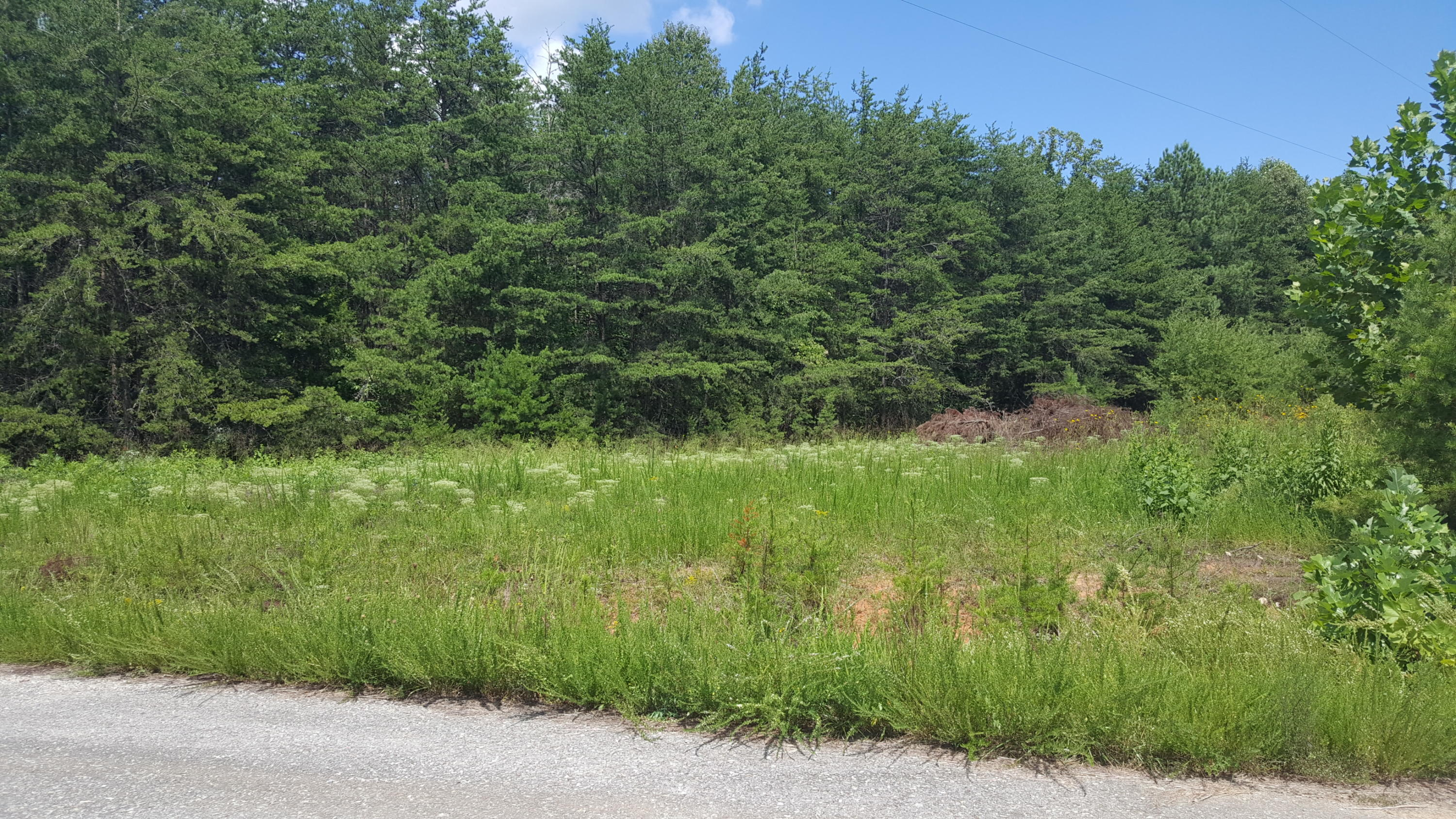 Photo of Lot 50 Dillon Cabin RD Moneta VA 24121