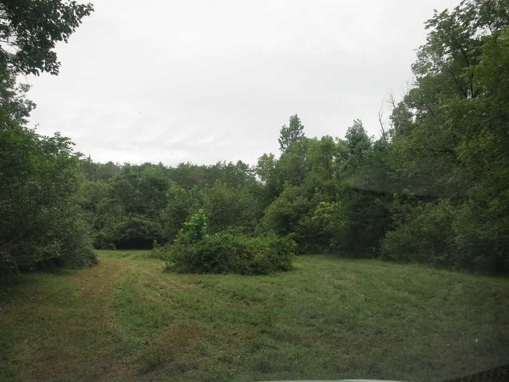 Photo of 0 Long View LN Buchanan VA 24066