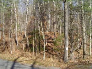Photo of 0 RHODODENDRON RD Callaway VA 24067