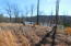 Lot 1 Rabbit Run RD, Goodview, VA 24095
