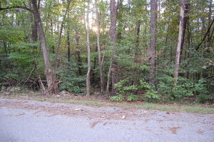 Lot 37 Old Barn RD, Moneta, VA 24121