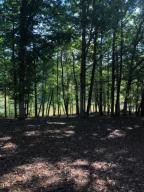 Lot 57 Lakewatch CIR, Moneta, VA 24121