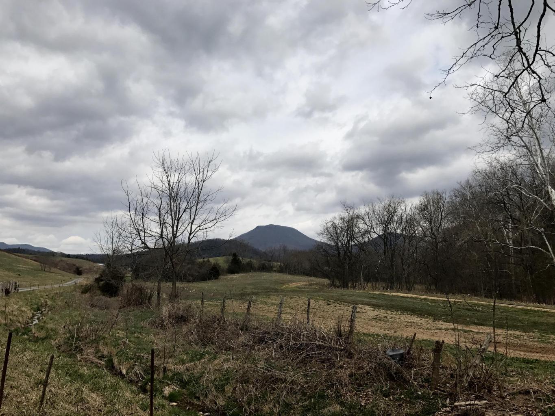 Photo of 00 Turnpike RD Lexington VA 24450
