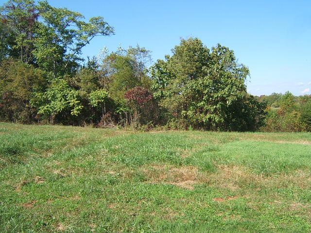 Photo of Lot 7 Savanna Hills DR Moneta VA 24121