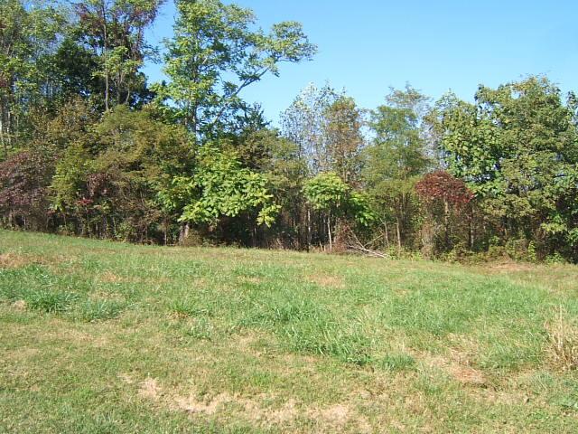 Photo of Lot 8 Savanna Hills DR Moneta VA 24121