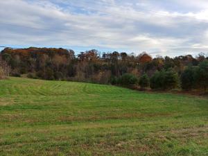 00 TAYLORS RD, Boones Mill, VA 24065