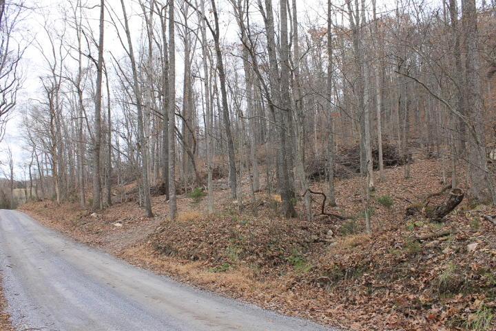 Photo of 0 Solitude RD Buchanan VA 24066