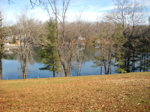 Lot 8 Hales Ford RD, Moneta, VA 24121