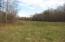 Beautiful creek -bottom land--fertile and rich