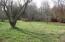 Yard beside house
