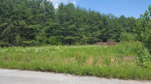 Lot 49 Dillon Cabin RD, Moneta, VA 24121