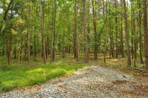 LOT 41 Anchor DR, Moneta, VA 24121