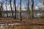 Lot 4 Capewood DR, Huddleston, VA 24104