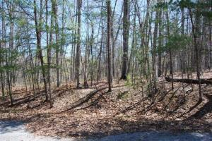 LOT 21 Birch Hill RD, Moneta, VA 24121