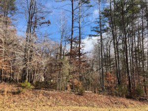 Lot 8 Hidden Valley TRL, Moneta, VA 24121