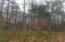 Lot 8 Hidden Valley TRL, Moneta, VA 24121