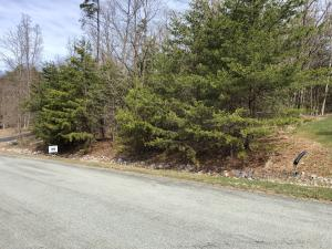 Lot 14 Edgewater DR, Moneta, VA 24121