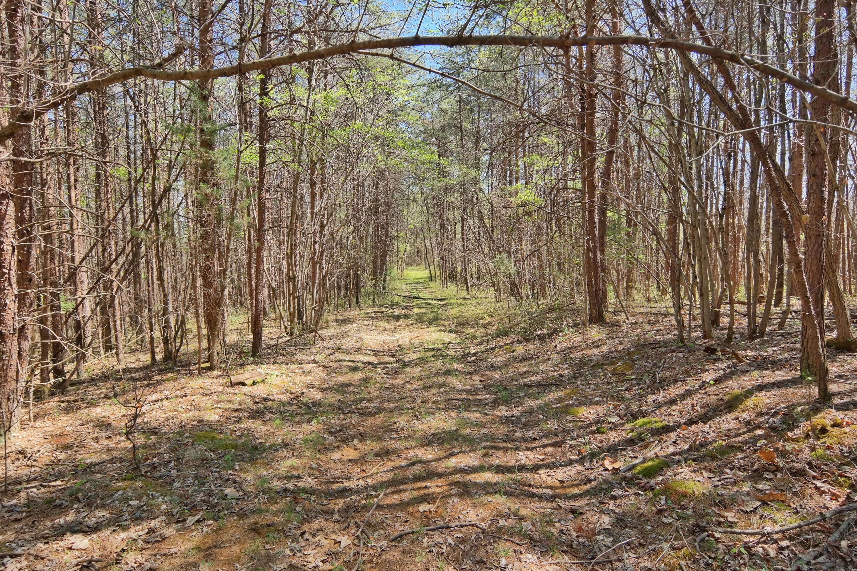 Photo of 0 Mt Moriah RD Eagle Rock VA 24085
