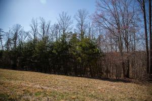 Lot 7 Old Point RD, Moneta, VA 24121