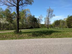 Lot 3 Strawberry Banks DR, Moneta, VA 24121