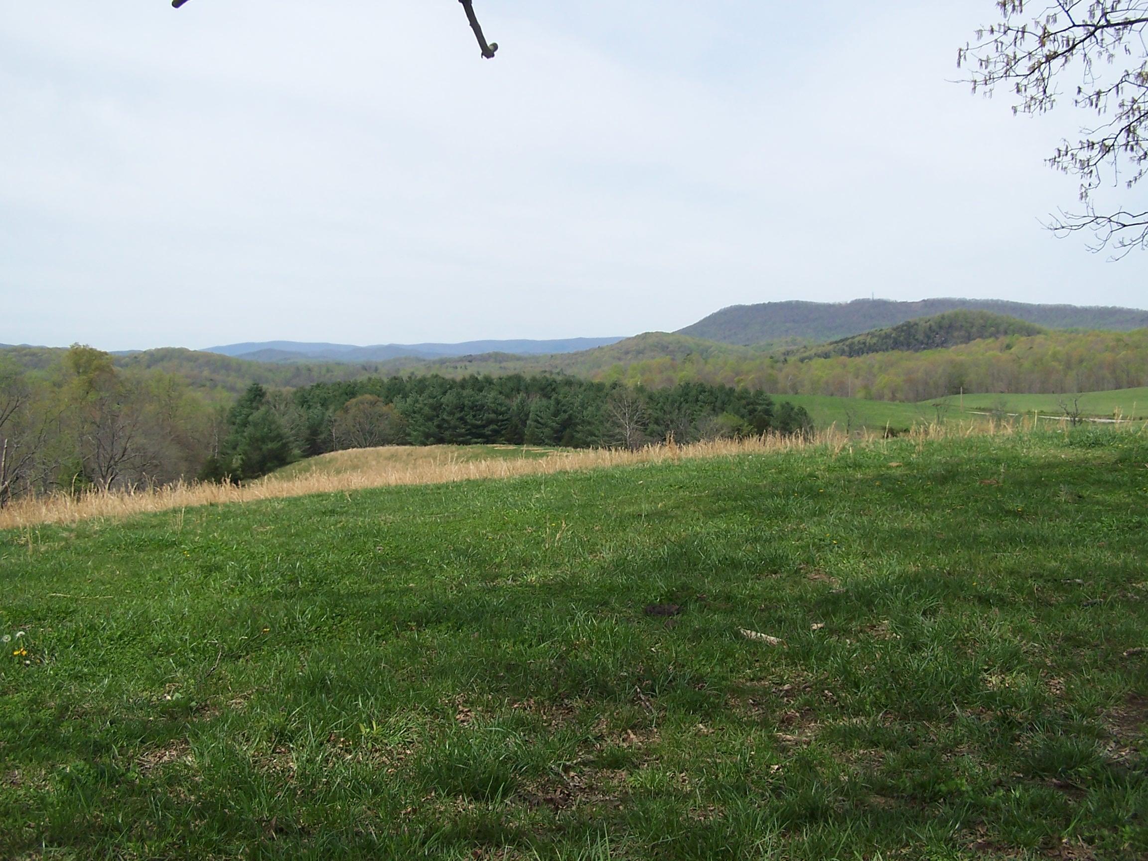 Photo of 0 Salisbury RD Eagle Rock VA 24085