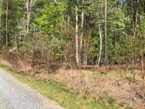 Lot 9 Hickory DR, Goodview, VA 24095