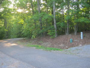 Lot 14 W Beaver Dam CT, Goodview, VA 24095