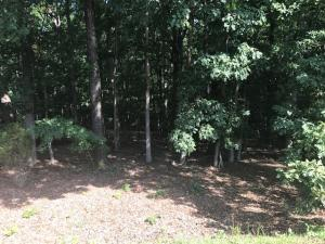 Lot 35 Island Pointe LN, Moneta, VA 24121