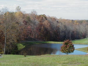 Lot 67 Peaks View DR, Moneta, VA 24121